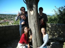sommieres_view_group_tree.jpg