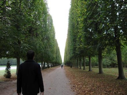 versailles_gardens_infinity_tree_path_ryan.jpg