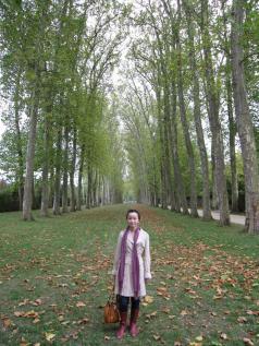 versailles_gardens_infinity_trees_jane.jpg