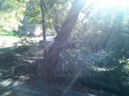 deer_crossing_inn_mineshaft_sign.jpg
