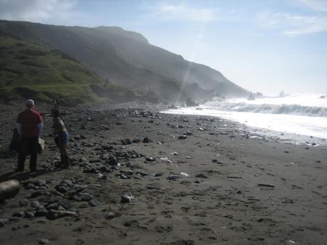 muir_beach_1.jpg