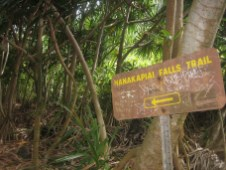 na_pali_hike_hanakapiai_falls_sign.jpg