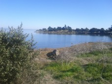 candlestick_point
