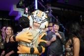 tony_the_tiger
