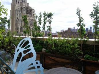 google_new_york_rooftop_deck