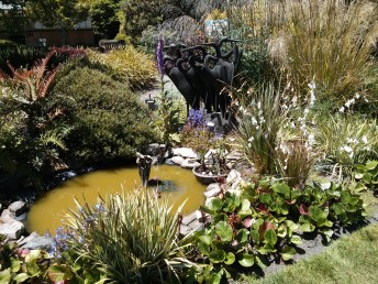 botanical_garden_pond