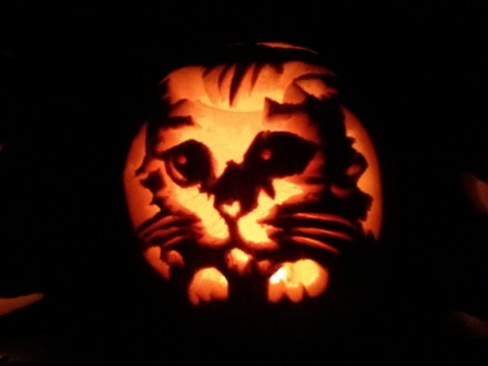 pumpkin_kitten