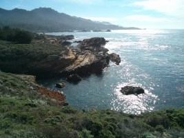 point_lobos_coast_2