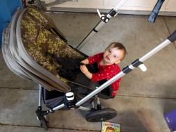 buckle_stroller