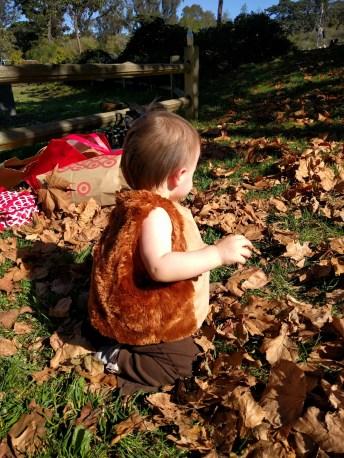 leaves_brooke