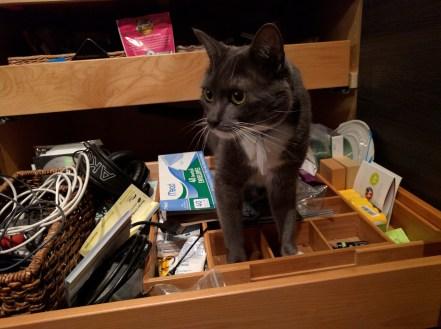 marley_drawer