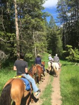 horseback_behind_group