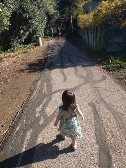 ashcrafts_park_walking_trail