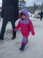 snow_walking_2