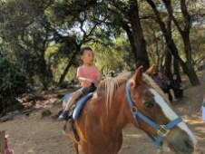 howarth_park_train_horse_ride_blake
