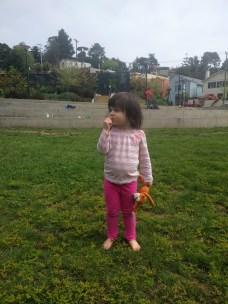 park_grass