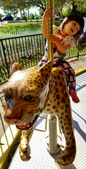 carousel_leopard