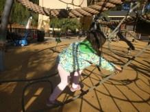 playground_ropes_2