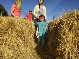 pumpkin_patch_clara_gina_sunglasses