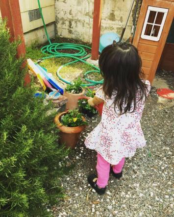watering_plants