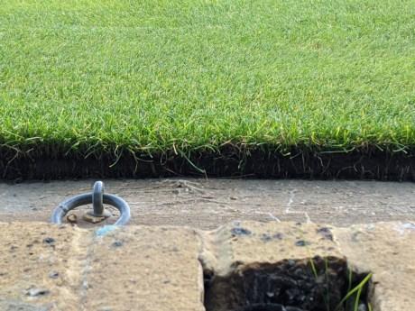 wimbledon_grass
