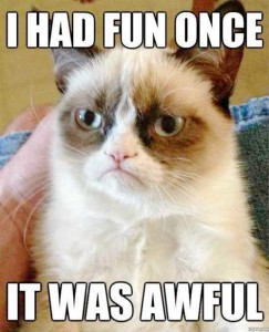 Tard the Grumpy Cat meme I have fun once it was awful