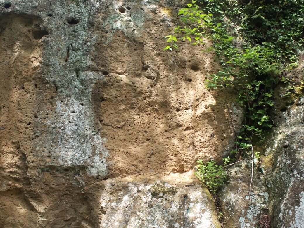 Tuff outcrop at Sassotondo in the Maremma