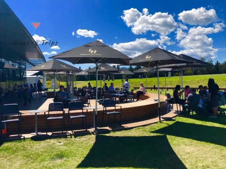 Melbourne wineries in Yarra Valley