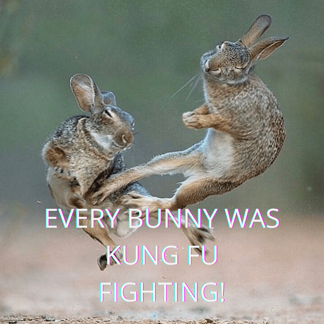 every_bunny_was_kung_fu_fighting!.png