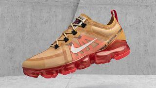 【12/28】ナイキ エアヴェイパーマックス 2019 / Nike Air VaporMax 2019 AR6631-701