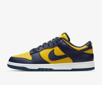 nike-dunk-michigan-DD1391-700