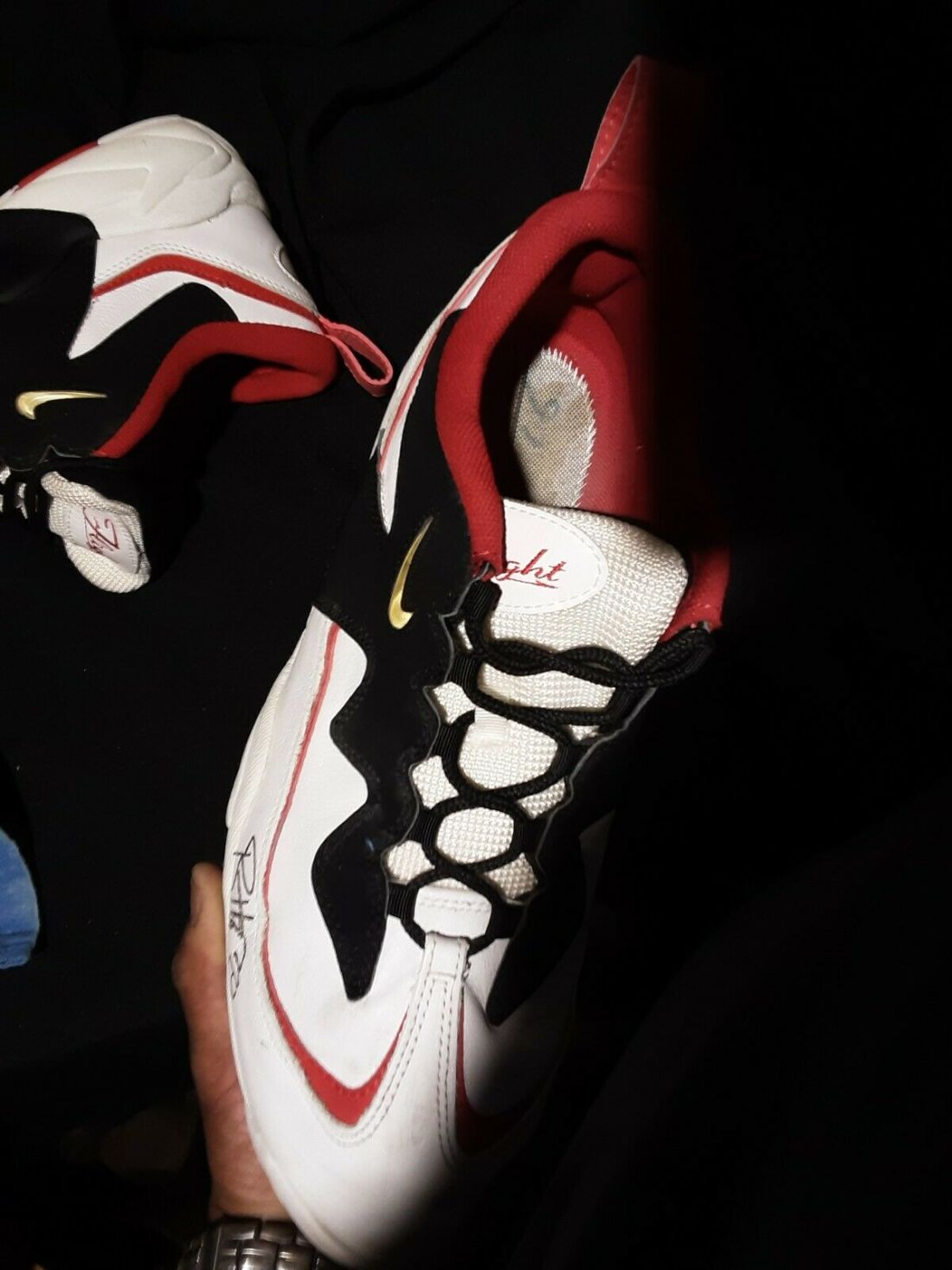 Ron Harper's Nike Air Lambaste