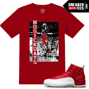 Gym Red 12 sneaker tee shirts matching
