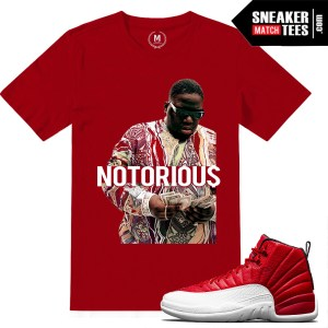 Gym Red T shirts Match Jordan 12