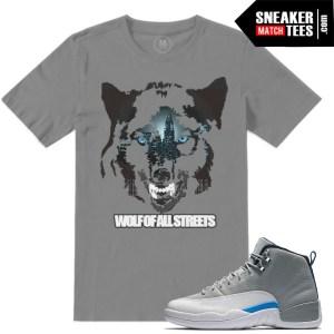Jordan 12 Wolf Grey match Sneaker tees