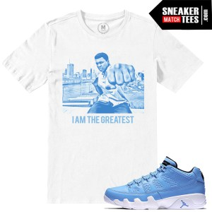 Jordan Retro Shirts match Pantone 9 low