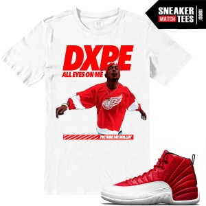 Gym Red 12 t shirts match Jordan Retros