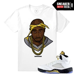 Jordan V Olympic t shirt Match