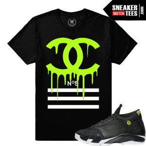 Sneaker tees Indiglo 14 match
