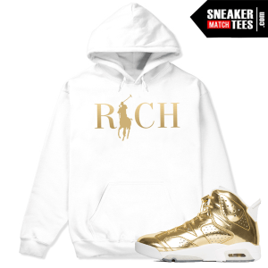Jordan 6 Pinnacle Hoodie Match