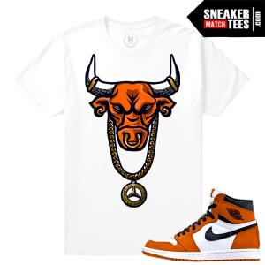 Reverse Shattered Backboard Jordan 1 shirt