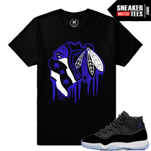 Jordan 11 Matching Tees Space Jam 11