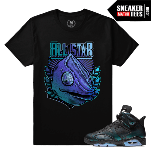 All Star 6s Chameleon Sneaker Tee