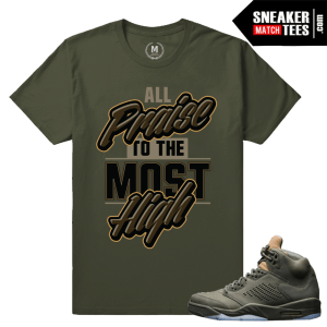 Sneaker Tees Match Take Flight 5