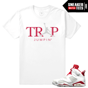 Sneaker shirts Jordan 6 Alternate