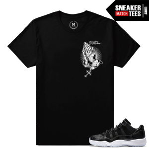 Sneaker Match Shirts Barons 11 Lows