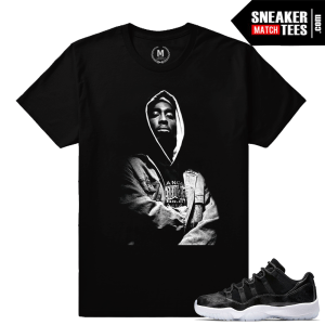 Sneaker Shirts Match Jordan 11 Barons