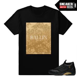 Sneaker Match Shirts DMP 14 Jordan
