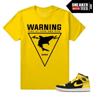 Air Jordan 1 New Love T shirt
