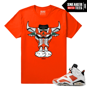 Gatorade 6s Sneaker tees Orange 6s Bull